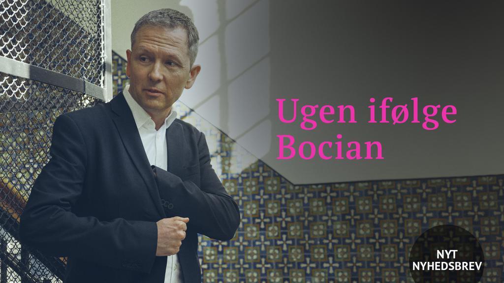 nyhedsbrev-bocian-u-logo.jpg