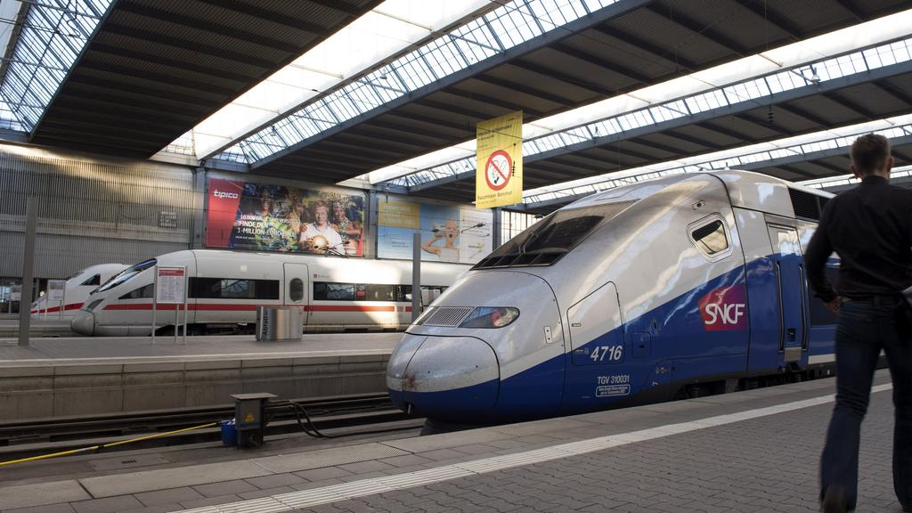 French High Speed Train (TGV) made by French train maker Alstom stops next to German High Speed Train (ICE) made by Siemens at Munich''s railway station